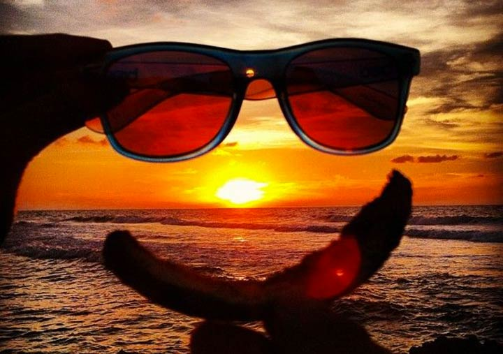 Otticanet Sunglasses: Let's think out of the box!
