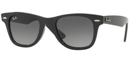 ORIGINAL WAYFARER JUNIOR RJ 9066S