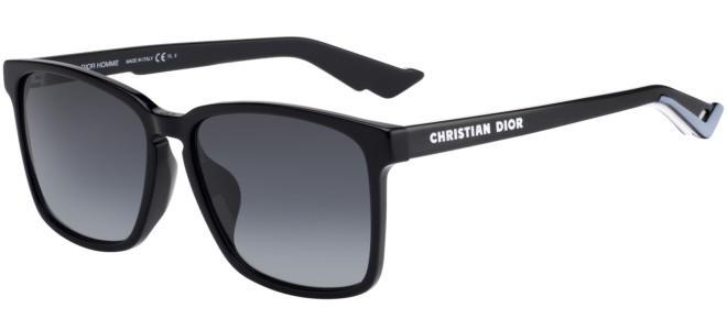 Dior zonnebrillen DIOR B 24.2 F