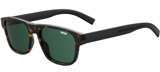 Dior sunglasses DIOR FLAG 2