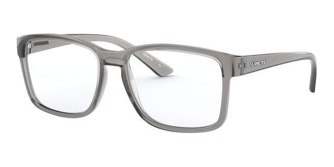 Arnette brillen DIRKK AN 7177