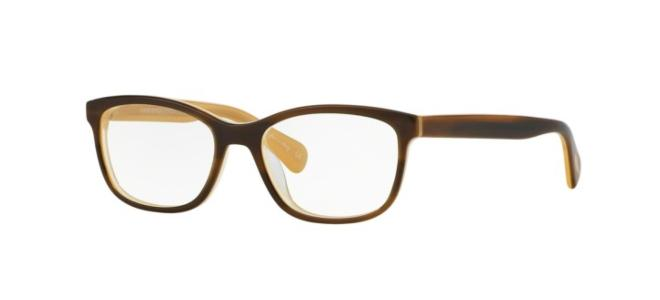 Oliver Peoples briller FOLLIES OV 5194