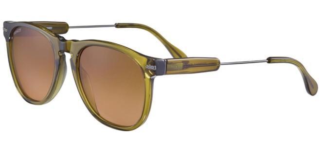 Serengeti sunglasses AMBOY