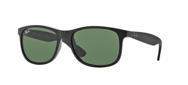 Ray-Ban sunglasses ANDY RB 4202