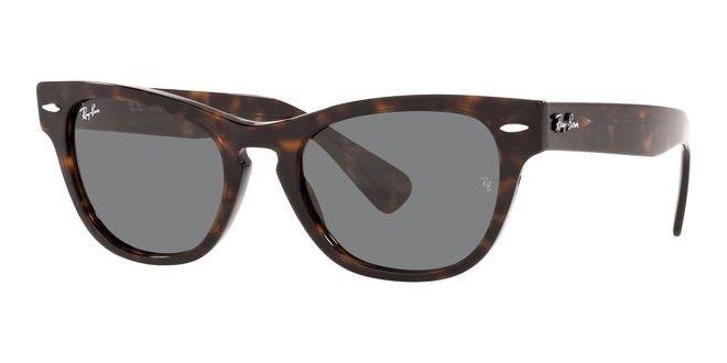 Ray-Ban zonnebrillen LARAMIE RB 2201