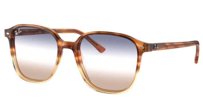 Ray-Ban zonnebrillen LEONARD RB 2193