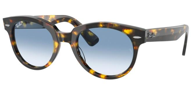 Ray-Ban zonnebrillen ORION RB 2199