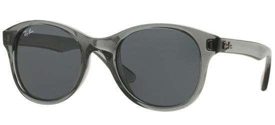 Ray-Ban PLASTIC ROUND RB 4203