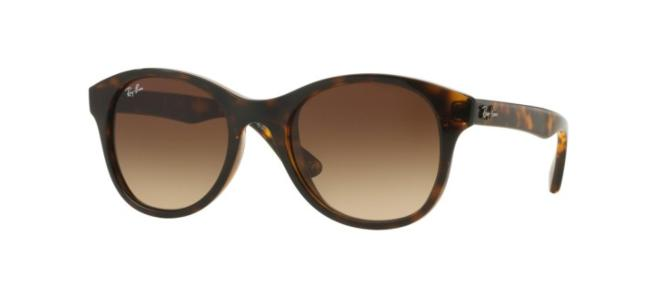 Ray-Ban sunglasses PLASTIC ROUND RB 4203