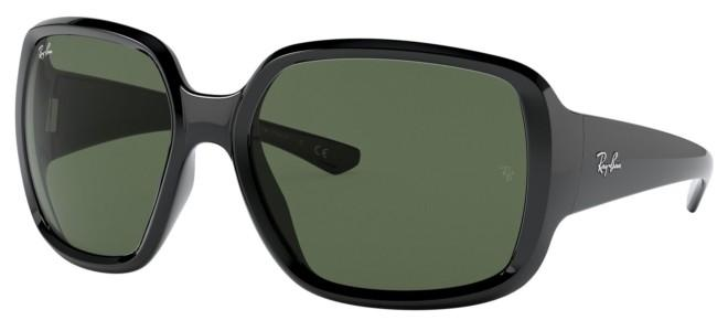 Ray-Ban sunglasses POWDERHORN RB 4347