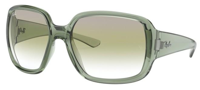 Ray-Ban zonnebrillen POWDERHORN RB 4347