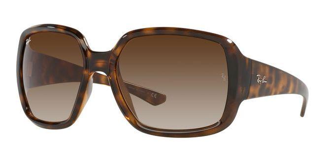Ray-Ban zonnebrillen POWDERHORN RB 4347