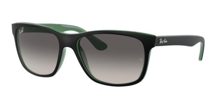 Ray-Ban zonnebrillen RB 4181