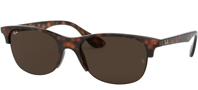 Ray-Ban sunglasses RB 4419