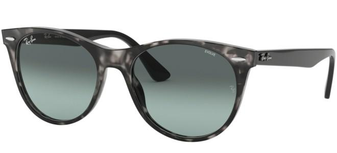 Ray-Ban sunglasses WAYFARER II RB 2185 EVOLVE LENSES