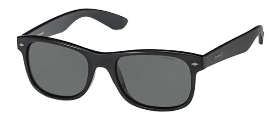 Polaroid sunglasses PLD 1015/S