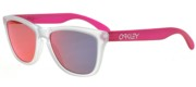 FROGSKINS OO 9013 COLORBLOCK COLLECTION
