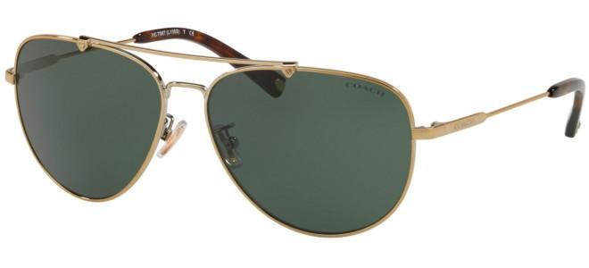 Coach sunglasses HC 7087
