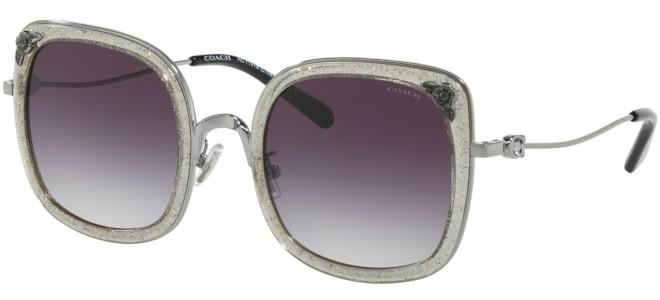 Coach sunglasses HC 7101B