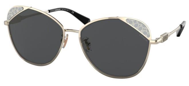 Coach sunglasses HC 7119