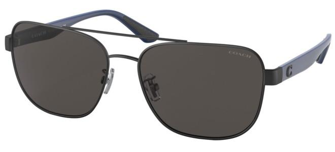 Coach sunglasses HC 7122