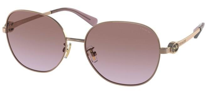 Coach sunglasses HC 7123