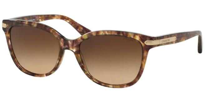 Coach sunglasses HC 8132