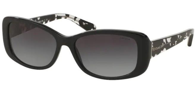 Coach sunglasses HC 8168