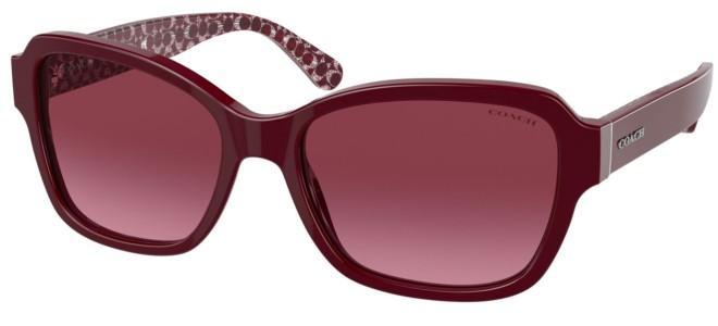 Coach sunglasses HC 8232
