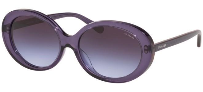 Coach sunglasses HC 8270U