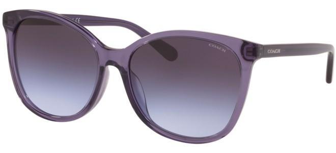 Coach zonnebrillen HC 8271U