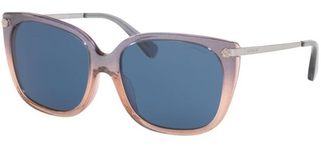 Coach sunglasses HC 8272