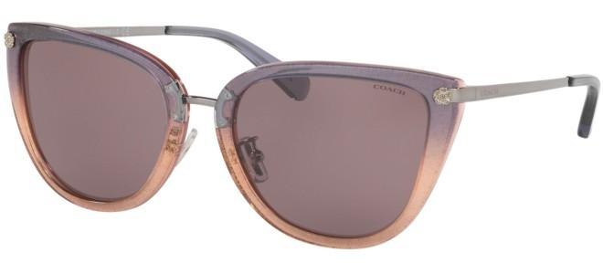 Coach sunglasses HC 8276