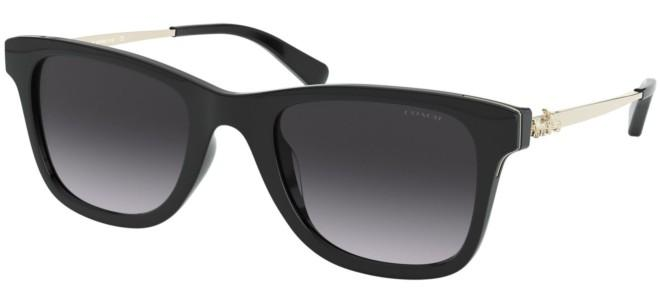 Coach sunglasses HC 8279U