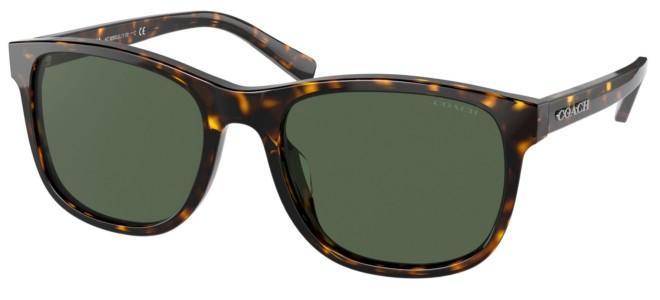 Coach sunglasses HC 8283U