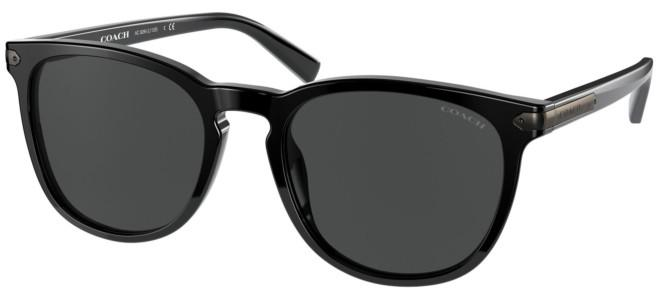 Coach sunglasses HC 8284