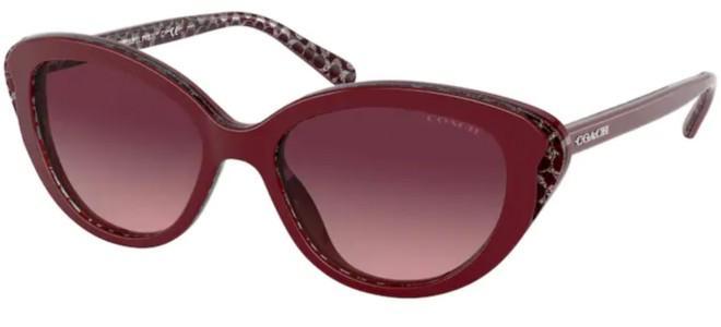 Coach sunglasses HC 8288