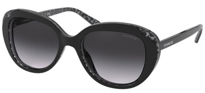 Coach sunglasses HC 8289