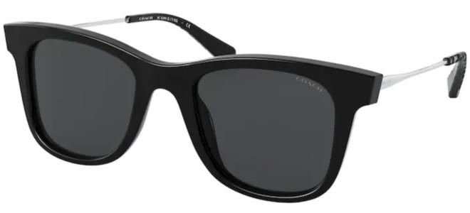 Coach sunglasses HC 8290