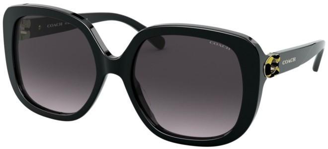 Coach sunglasses HC 8292