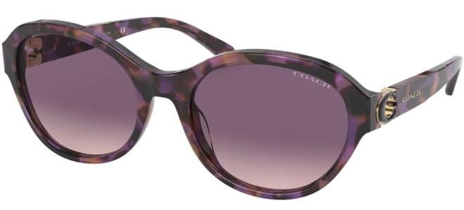 Coach sunglasses HC 8293
