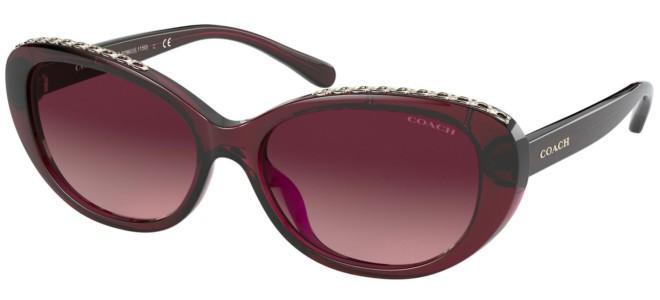 Coach sunglasses HC 8296U