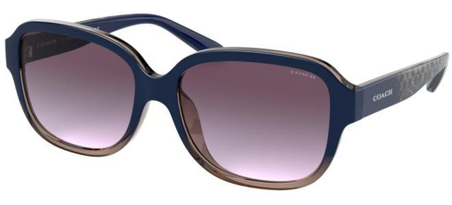 Coach zonnebrillen HC 8298U