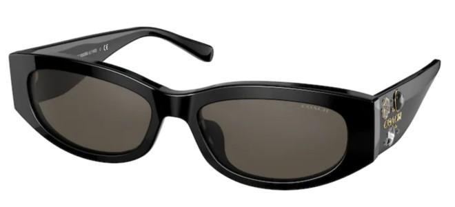 Coach solbriller HC 8302BU