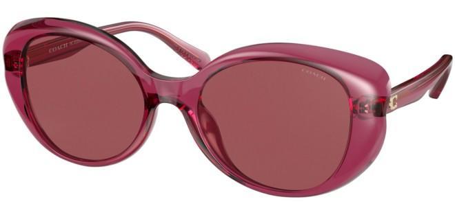 Coach sunglasses HC 8306U