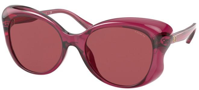 Coach sunglasses HC 8307U