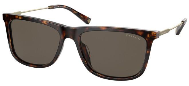 Coach sunglasses HC 8310U