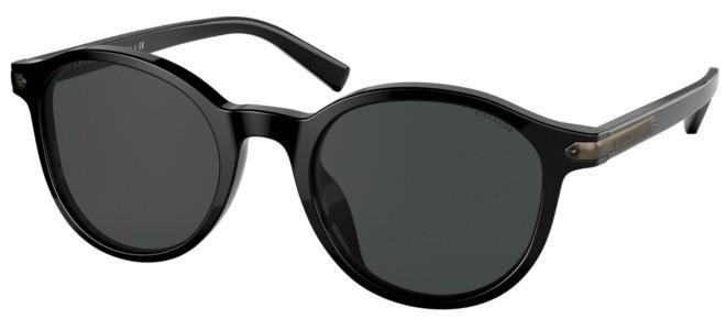 Coach sunglasses HC 8312U