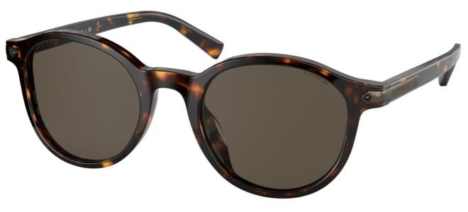 Coach sunglasses HC 8312U