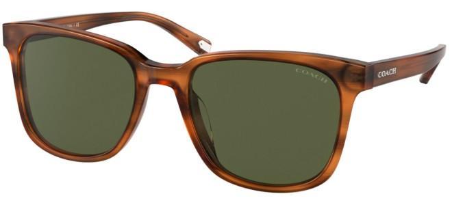 Coach sunglasses HC 8313U